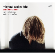 Michael Wollny Trio: Weltentraum Cover
