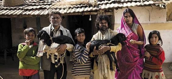 Irgendwo in Indien - Live aus Peepli