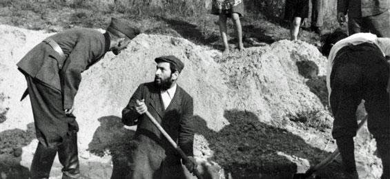 Zwangsarbeit. Die Deutschen, die Zwangsarbeiter und der Krieg