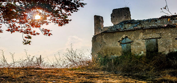 Die Heimat, der Krieg und der Goldene Westen. Ein deutsches Lebensbild  Wolfgang Bittner