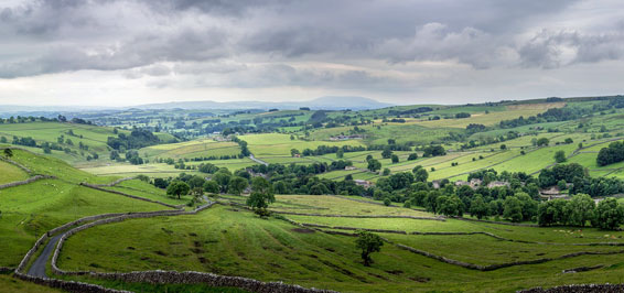 Yorkshire Foto Tim Hill