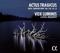 Vox Luminis Cover