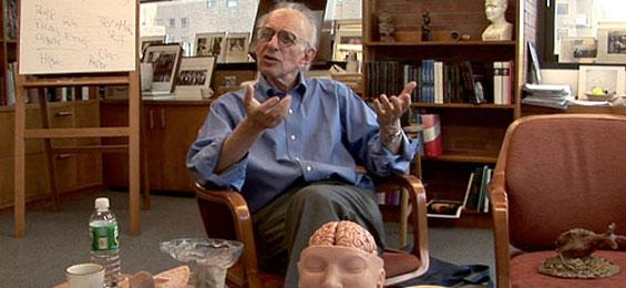 Auf der Suche nach dem Gedächtnis - Ein Film von Petra Seeger über den Hirnforscher und Nobelpreisträger Eric Kandel
