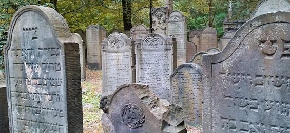 Jüdische Friedhofskultur in Hamburg: Der Jüdische Friedhof Hamburg-Altona