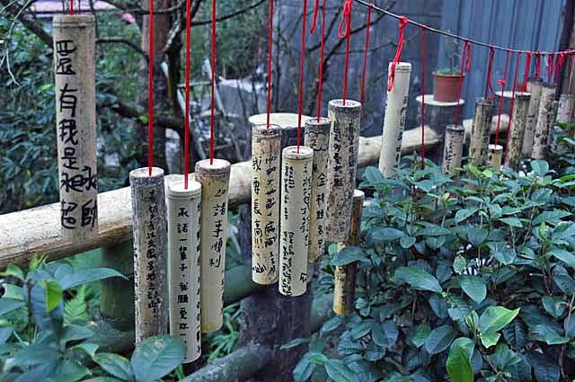 Pingxi – Bambus der Wünsche